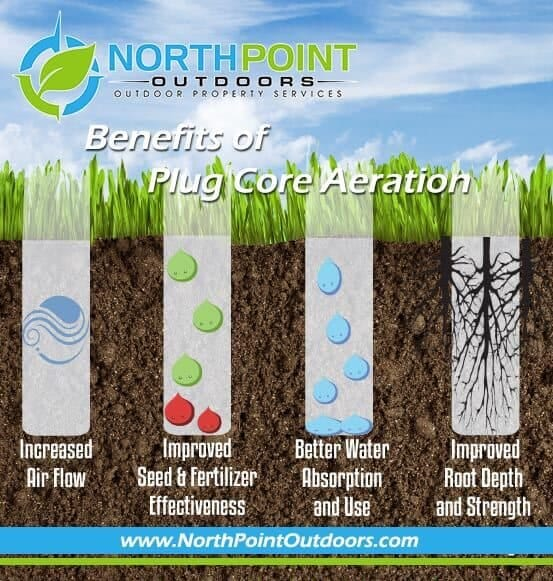 Benefits of Plug Core Aeration - Increased Air Flow - Better Water Absorption